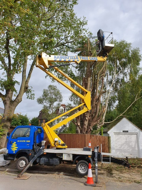 tree surgery jobs berkshire